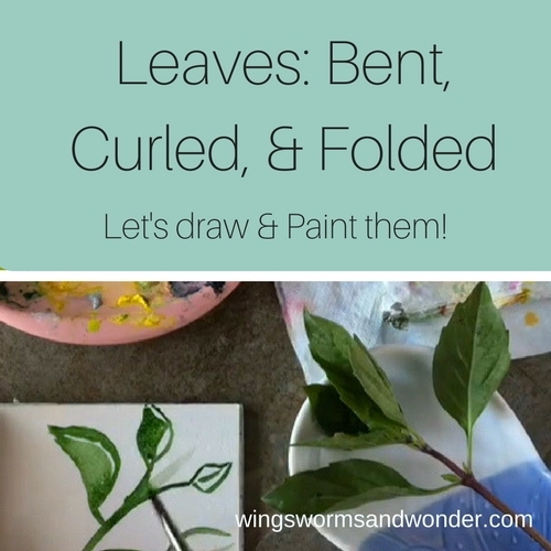 Leaves are so interesting, and are a great nature journaling example of how to break items into basic shapes. Click to try a fun WIngs, Worms, and Wonder leaf painting video tutorial!