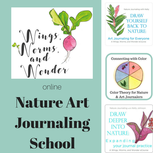 Expand your nature art journaling skills and enjoy creative connections with Wings, Worms, and Wonder's online nature art journal courses! Learn watercolor and drawing techniques while relaxing in all types of nature. They are great for all experience and many age levels!