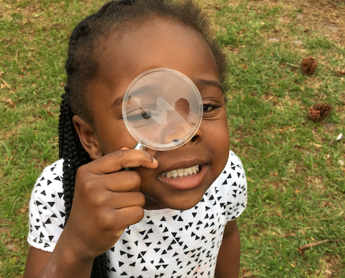 Click for fun Wings, Worms, and Wonder's ideas for helping make the invisible visible in your natural world!