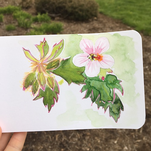 July is World Watercolor Month! Click for ideas on how to play along with Wings, Worms, and Wonder!