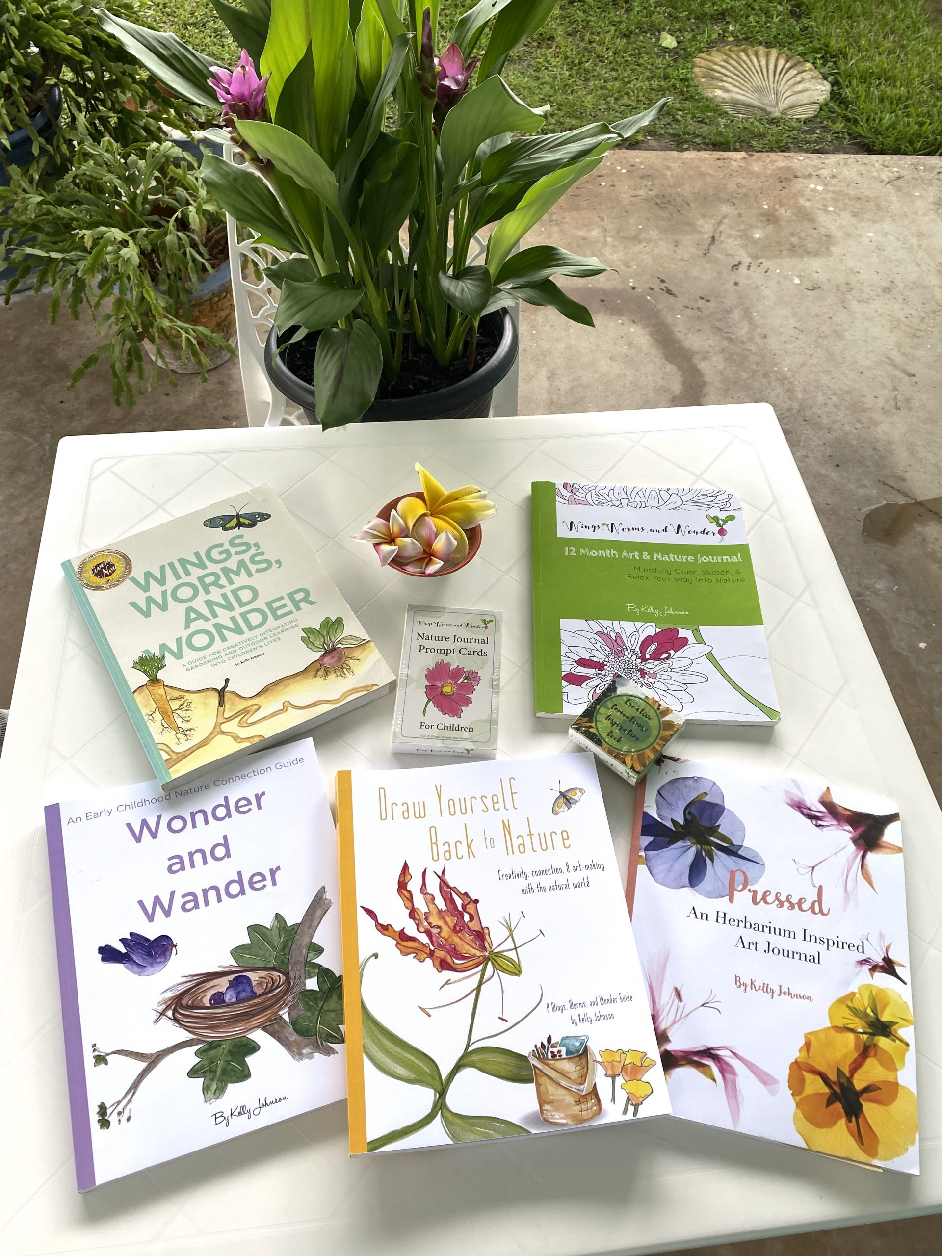 Books, Decks, Paints, Illustrations and more! All nature inspired by Wings, Worms, and Wonder!