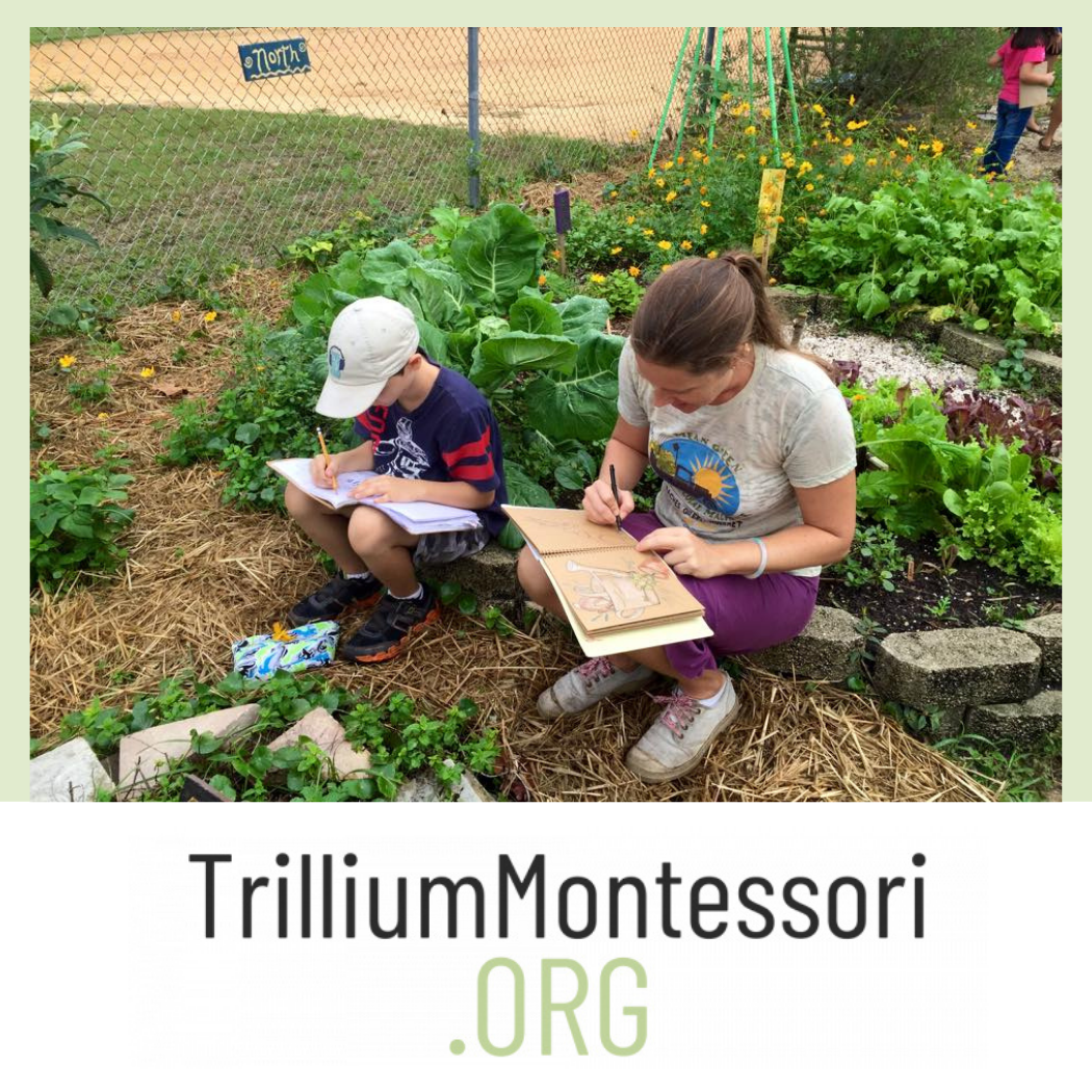 Eco-art, A Trillium Montessori Course with Wings, Worms, and Wonder